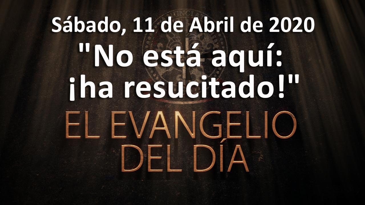 portada_web_evangelio_dia_200411